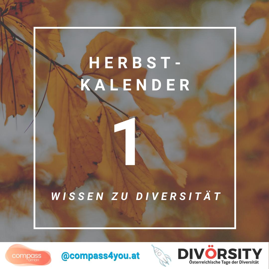 DIVÖRSITY-Herbstkalender: 15 Türchen, 15x Diversitäts-Wissen